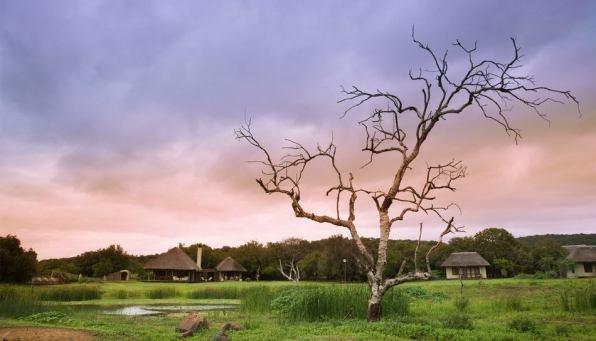 andBeyond Phinda Zuka Lodge
