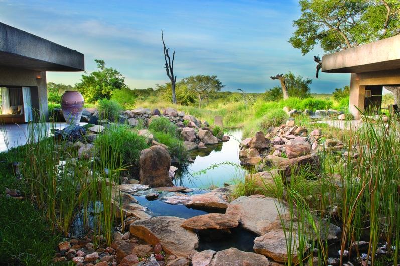 Sabi Sabi_Earth Lodge_Water Feature