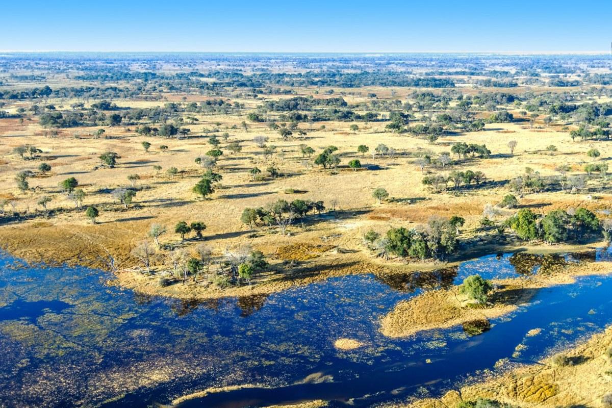235356880_Okavango Delta Botswana_1600x1067
