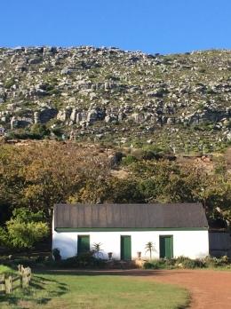 Cape Farm 2