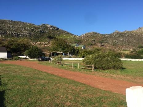 Cape Farm 3