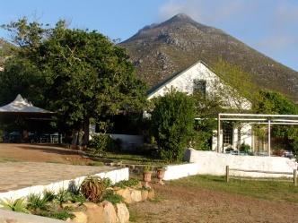 Cape Farmhouse 1