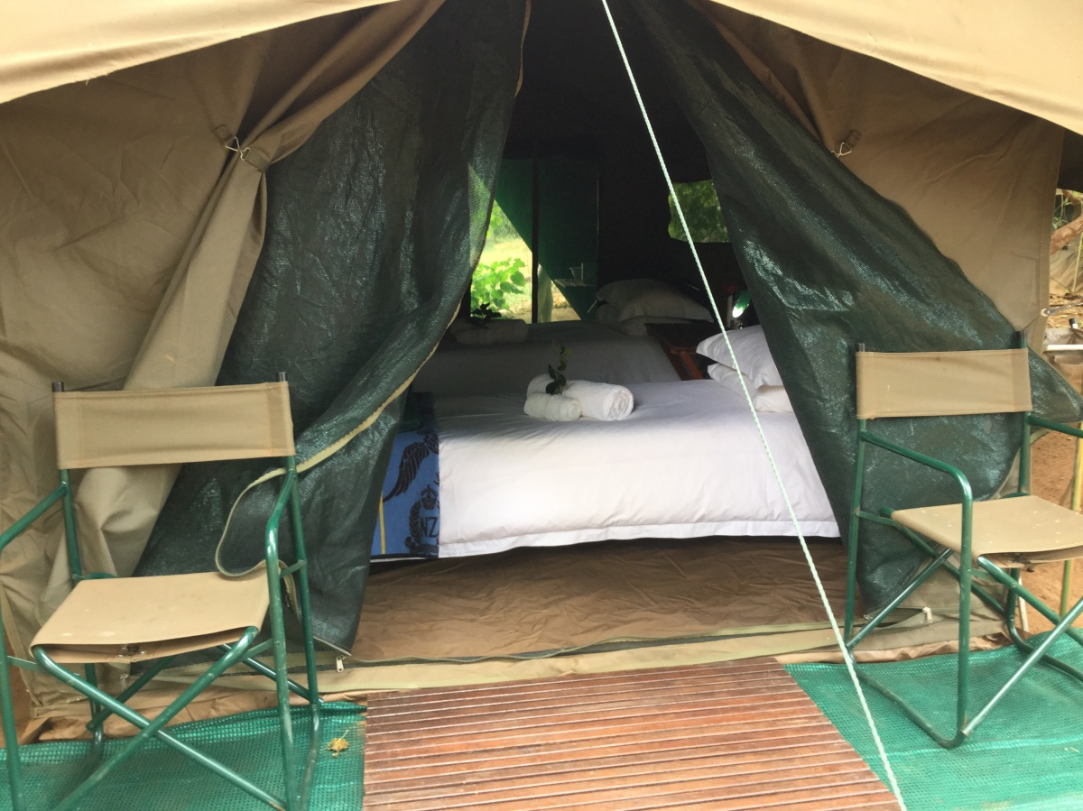 Pafuri Tented 1