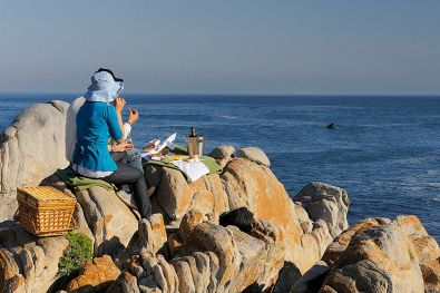 pic1487grootbos-whale-watching-south-africa-gansbaai-LR