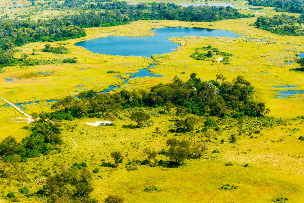 okavango-delta-botswana_298951286