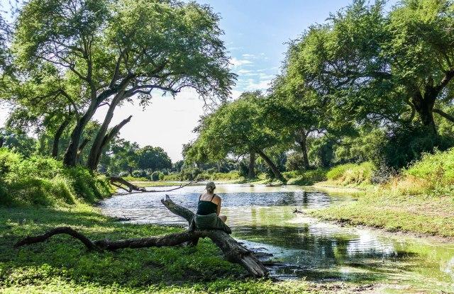African Bush Camps_Zambezi_Expeditions_Mana_Pools_National_Park_Zimbabwe_walking_safari_green_season.JPG