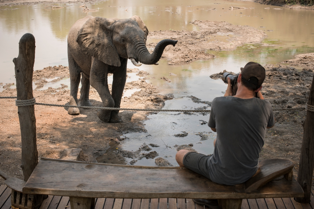 Kanga Camp Mana Pools Zimbabwe African Bush Camps Safari Tented Camp Photo Safaris with elephant (8).jpg