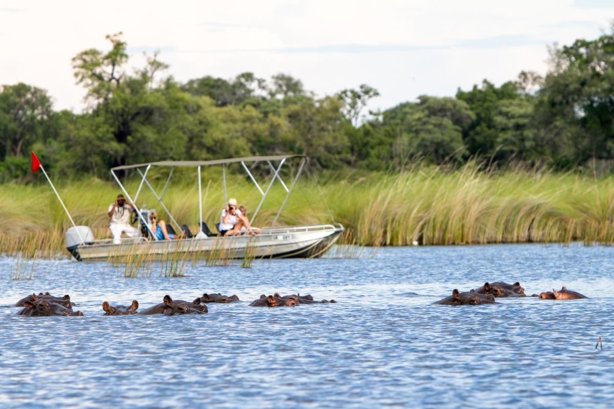 Camp-Moremi-Boating(2)