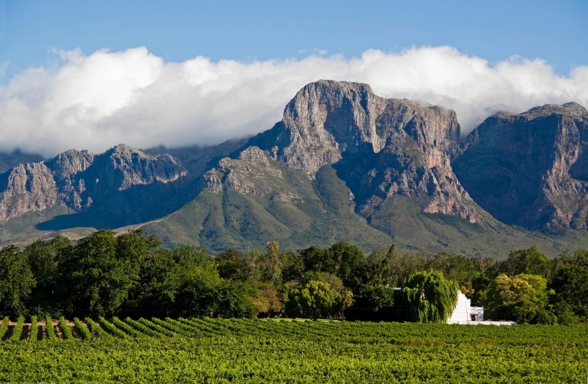 Cape Town Winelands-154918641.jpg