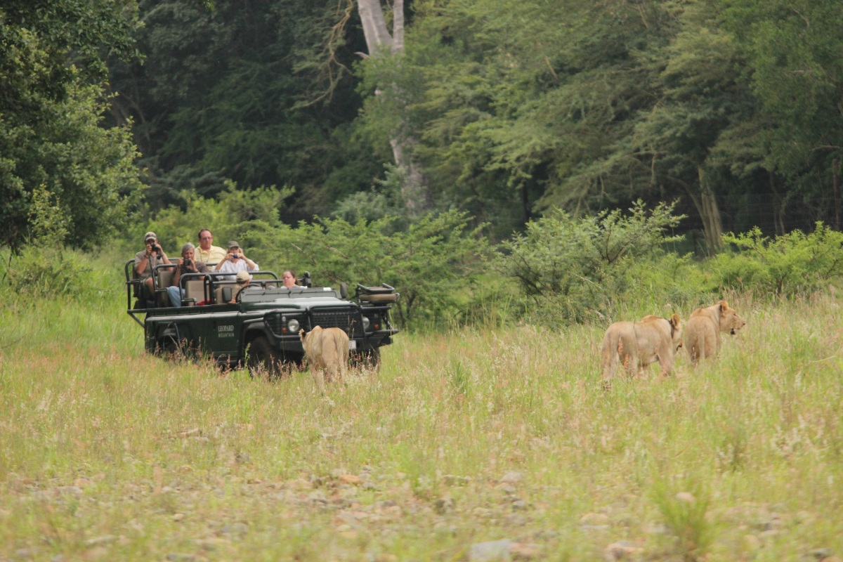 Game Drives 16-08-14 (8)