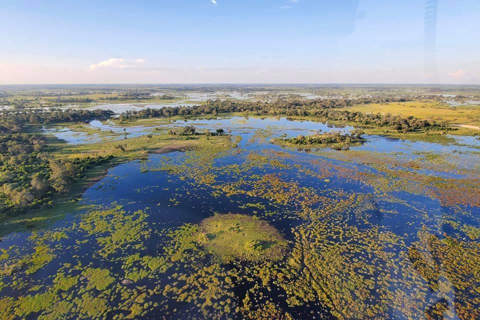 Okavango River 1