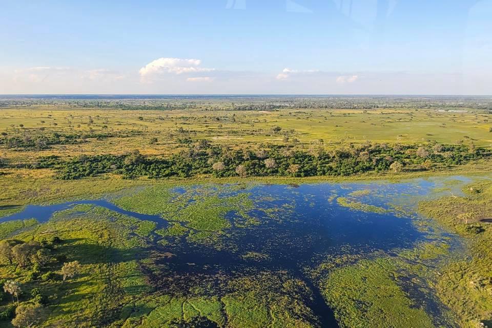 Okavango River 2