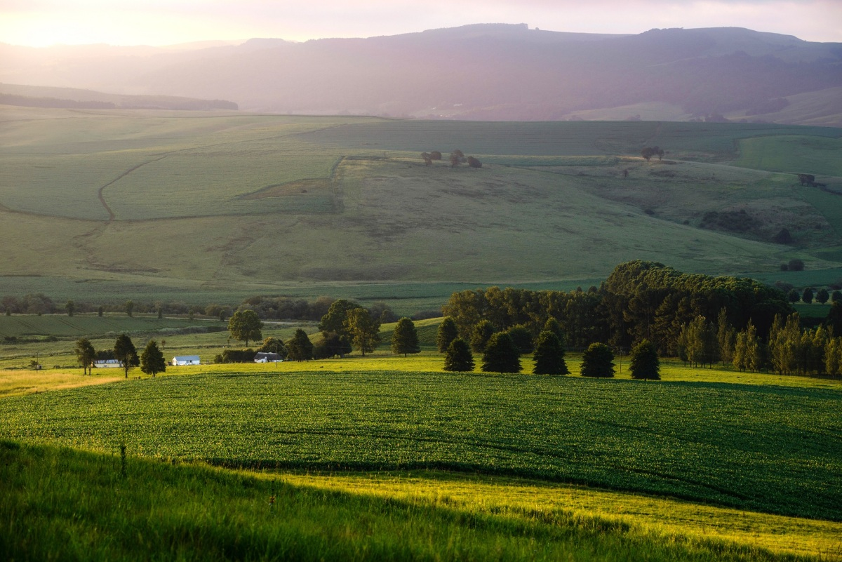 Midlands Meander, Kwazulu Natal, South Africa